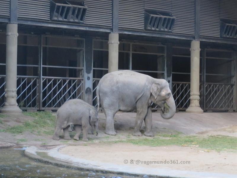 Hagenbecks Tierpark Zoo