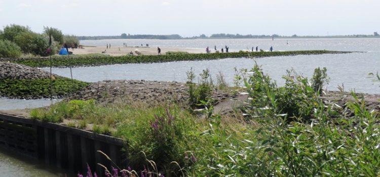 Kollmar – An die Elbe mit dem Rollstuhl (Ausflug)